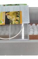 Инкубатор для яиц БЛИЦ НОРМА